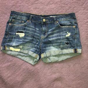 Midi Shorts
